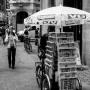 Capture danish newspapers