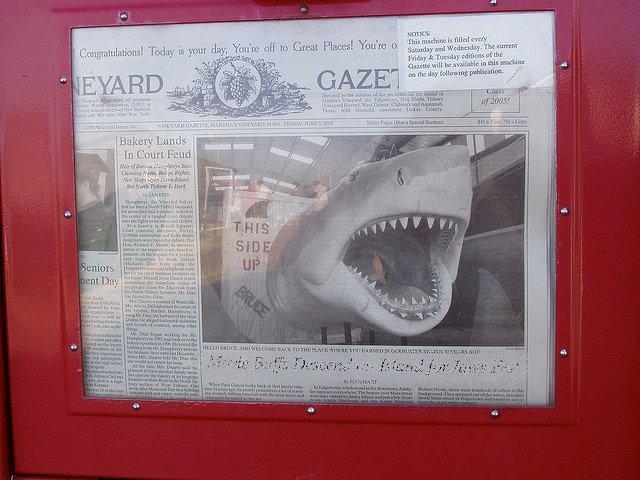 newspaper shark